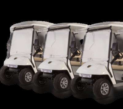 Fleet Golf Carts