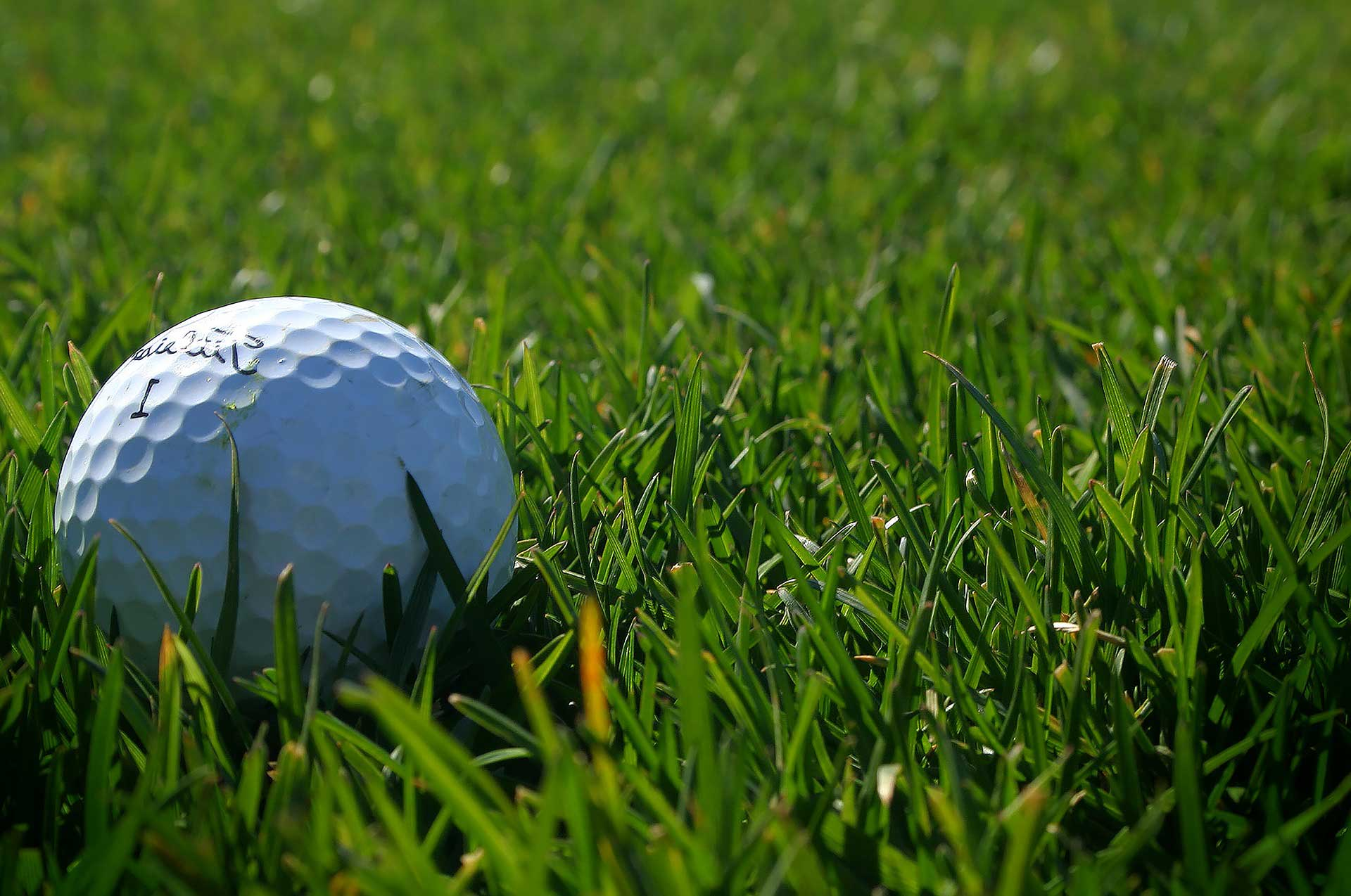 golf cart header background